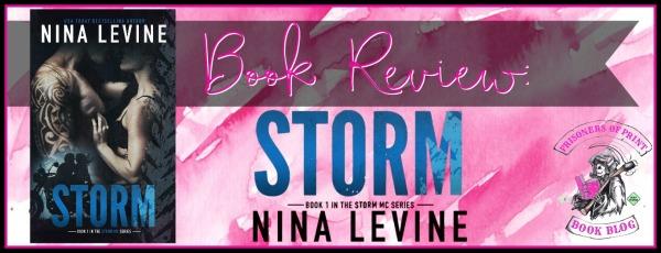 Storm Banner