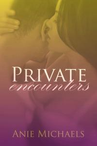 Private Encounters- ebook