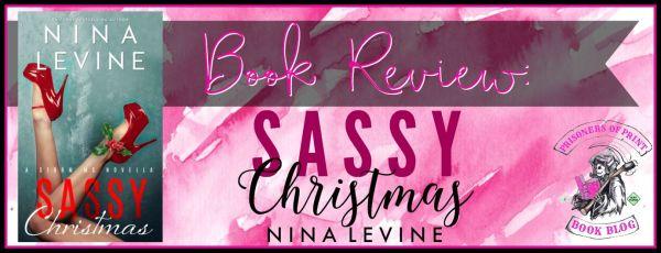Sassy Christmas Banner