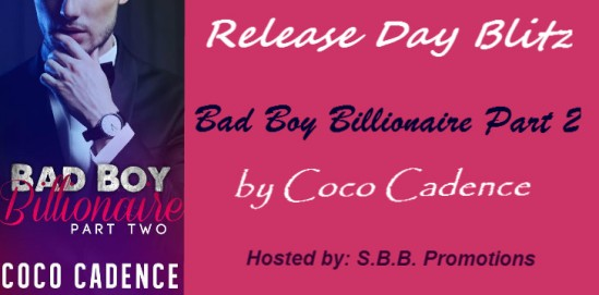 Bad Boy Billionaire Banner